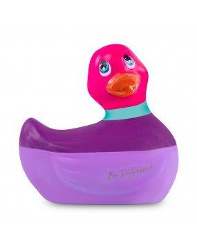 I Rub My Duckie Colours